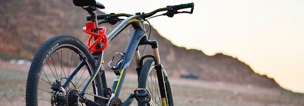 Comfort-Bikes-on-AmericasTrend