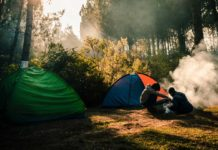 Tips-to-Stay-Safe-from-Bear-Attack-during-Camping-on-americastrend